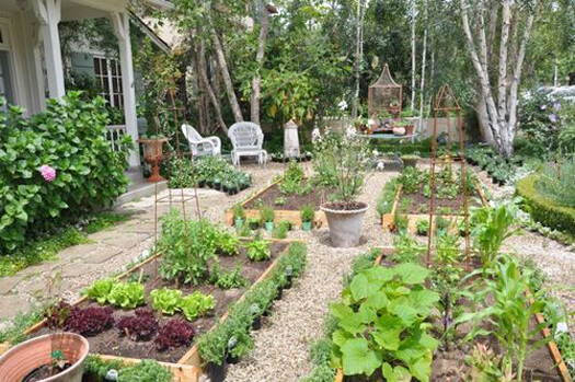 огород без хлопот для пожилых