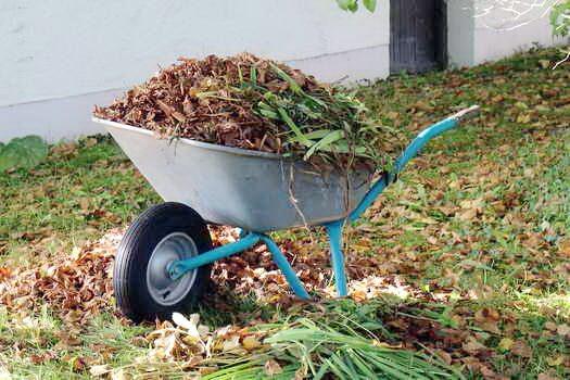 уборка листьев на огороде