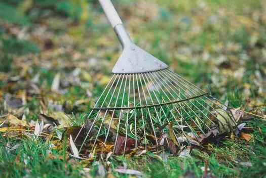 уборка огорода осенью