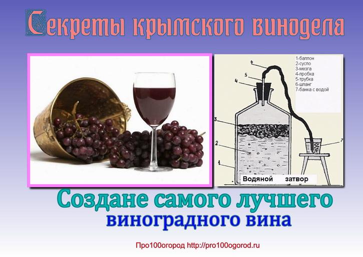 Рецепт вина из лидии в домашних условиях
