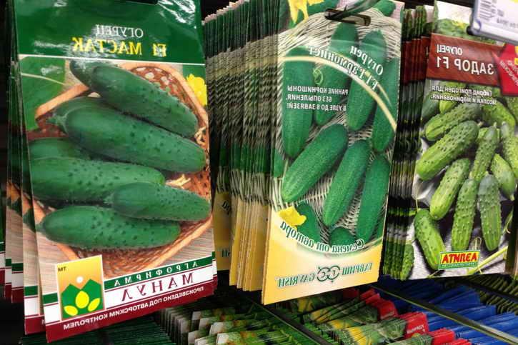 пакеты с семенами огурцов