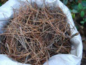 скошенная трава - мульча