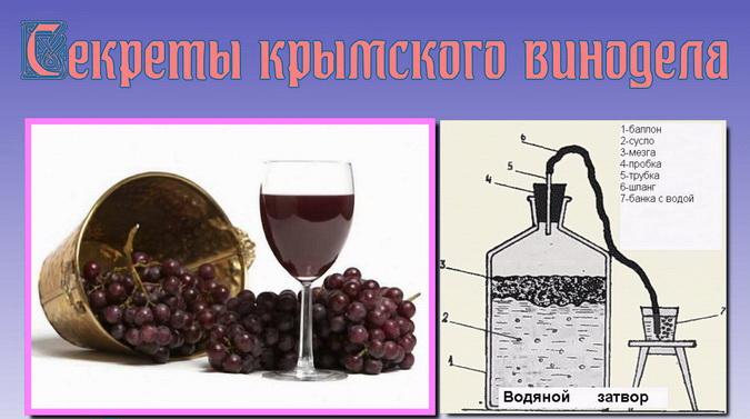 рецепт виноградного вина