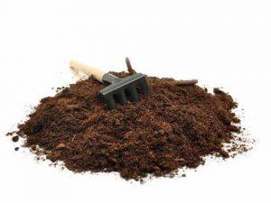 улучшить грунт для семян
