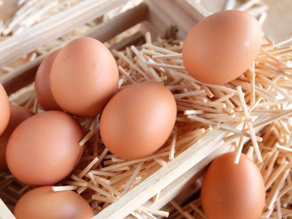 Первое яйцо по весу не превышает 45 г