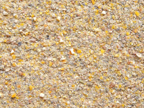 Рацион месячного птенца должен быть обогащён дроблёными зёрнами или их смесью - из пшеницы, овса, кукурузной муки