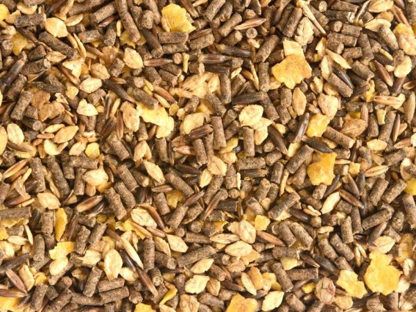 Зерновая смесь, комбикорм и влажная мешанка - это правильное и полноценное питание для бройлеров