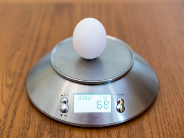 Вес куриного яйца без скорлупы