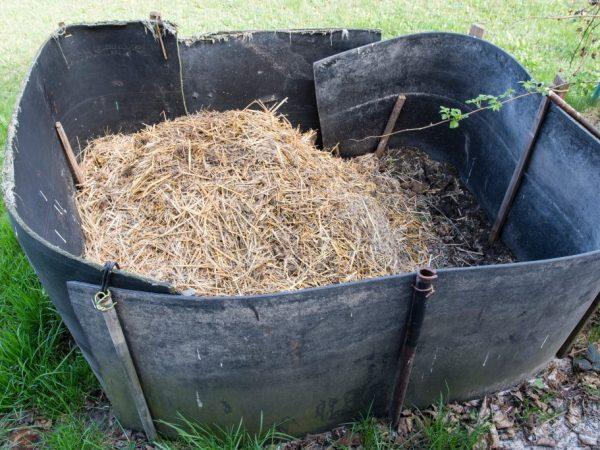 Компостная куча должна находиться в тени или укрыта темной плёнкой. Готов компост будет спустя полгода