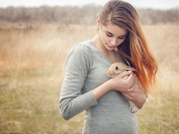 Нельзя поднимать кролика за уши, лапы или хвост. Эти животные являются достаточно хрупкими, поэтому их можно серьёзно травмировать