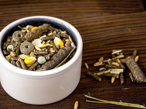 Ближе к весне запасы витаминов в организме иссякают, их нужно пополнять. Чтобы пополнить витамин А и Д, кроликам дают рыбий жир