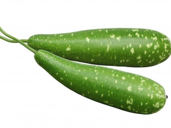 Овощи используют для создания ваз
