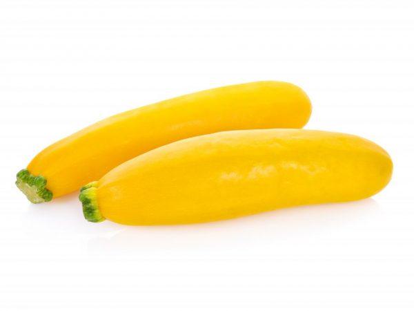 Несложное выращивание кабачка