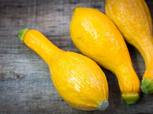 Плоды необычной формы вызывают интерес у садоводов
