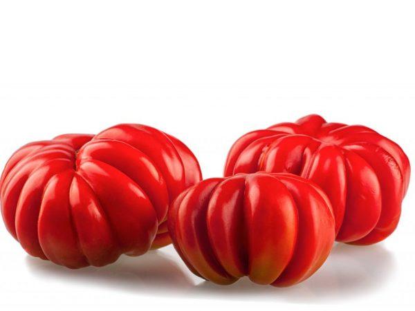 Сорт томата Американский ребристый