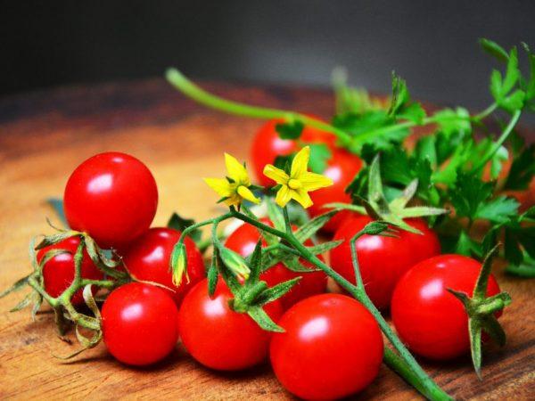 Маленькие томаты Пуговка