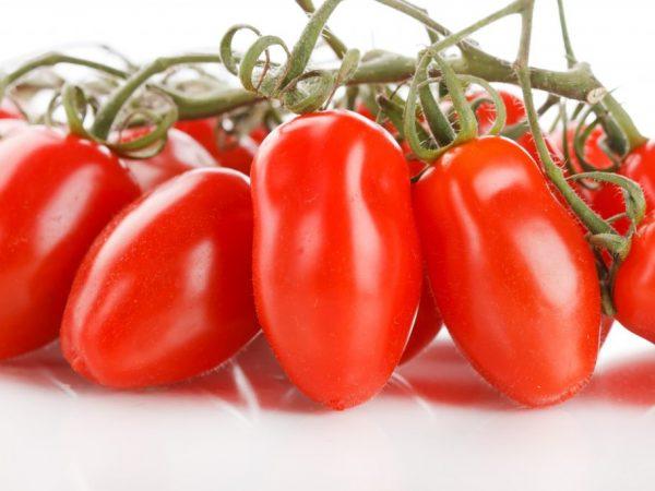 Плоды можно хранить в свежем виде два месяца