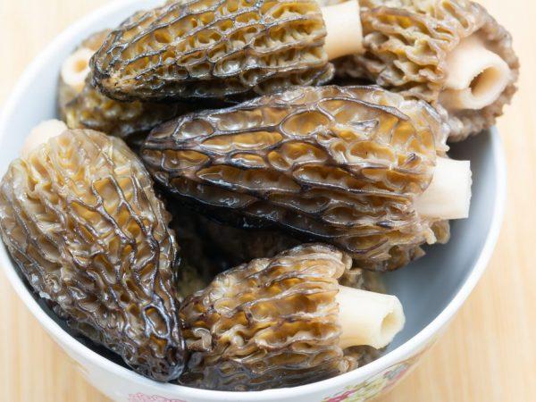Выбирайте для приготовления молодые грибы