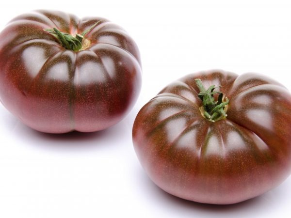 Выращивание томата Зефир в шоколаде