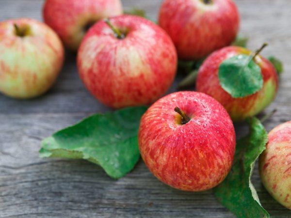 Яблоки помогают справиться с депрессией