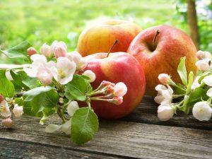 Вес яблок — показатели для разных размеров и сортов
