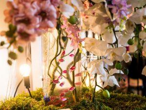 Желтеют листья орхидей — причины и методы устранения