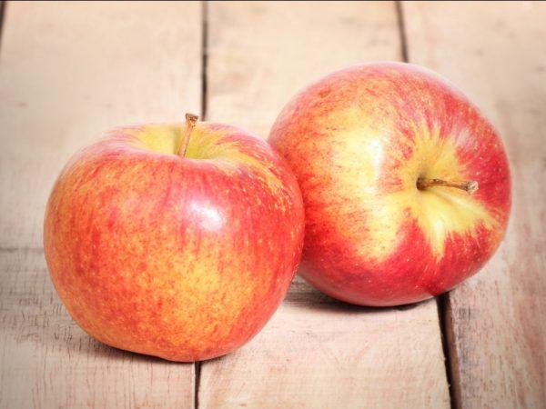 Яблоки Джонаголд — полная информация о сорте