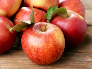 Летняя яблоня Горнист — информация о сорте