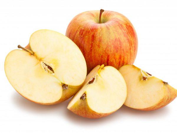 Яблоня Орловское Полосатое — особенности культивирования