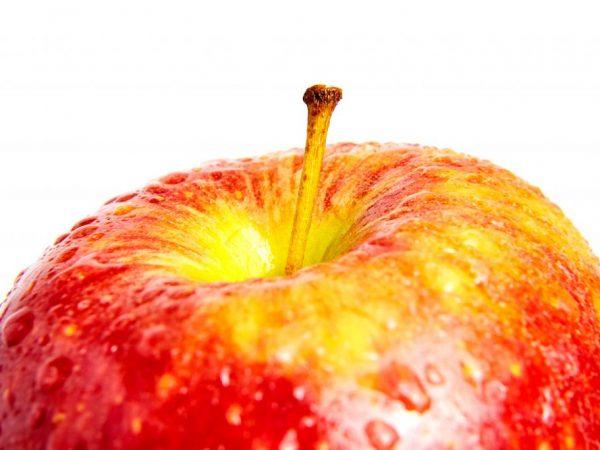 Яблоки Ред Чиф — сортовые особенности