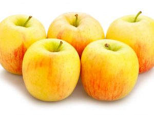 Яблоня Снежный Кальвиль — информация о сорте